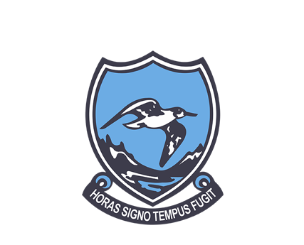 Hermanus High School